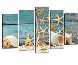 Cumpara ieftin Set 5 tablouri 3D Shell - Tablo Center, Albastru