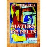 Matura de pelin - Ion Andreita