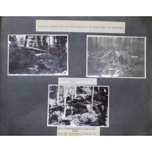 ALBUM DE FOTOGRAFII ORIGINALE DESPRE TAIEREA PRELUCRAREA LEMNULUI