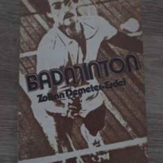 BADMINTON - ZOLTAN DEMETER-ERDEI