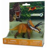 Figurina dinozaur Torosaurus pe platforma Collecta, plastic cauciucat, 3 ani+