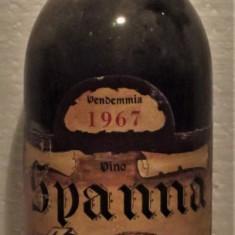 A12- VIN spanna, azienda agricola del mastro mussa, recoltare 1967 cl 72 gr 12,5