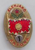 Cumpara ieftin Insigna Ungaria comunista militaria, militar de frunte