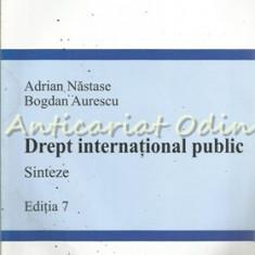 Drept International Public. Sinteze - Adrian Nastase, Bogdan Aurescu