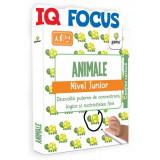 IQ FOCUS Animale • nivel Junior
