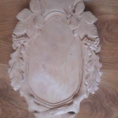 Panoplie caprior , tap mesteacan - 20x30cm vanatoare trofeu