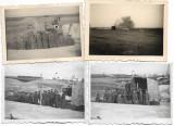 D128 Lot 4 poze artilerie de coasta romaneasca Constanta perioada monarhista