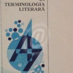 Mic dictionar indrumator in terminologia literara