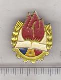 Bnk ins Insigna pionier - aluminiu vopsit, Romania de la 1950