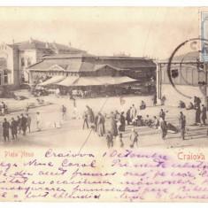 4516 - CRAIOVA, Market, Romania, Litho - old postcard - used - 1903 - TCV, Circulata, Printata
