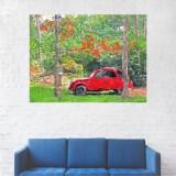 Tablou Canvas, Masina Rosie in Curte - 20 x 25 cm