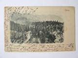 Rara! Sinaia-Castelul printului Ferdinand/Castelul Pelisor,carte pos.circ.1902, Circulata, Printata