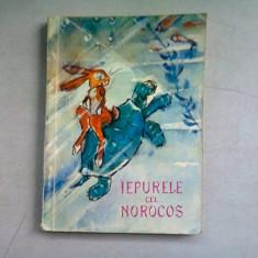 IEPURELE CEL NOROCOS - BASME POPULARE COREENE