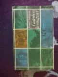 A8 Gutenberg la computer - Viorel Salagean