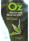 Din ce este facut un mar? Convorbiri cu Shira Hadad, Amos Oz