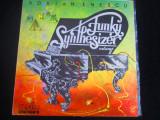 Adrian Enescu - Dance Funky Synthesizer, vol. 2_ vinyl,LP _ Electrecord(1984)