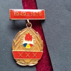 1979Insigna pionieri-30 ani