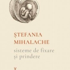 Sisteme de fixare si prindere/Stefania Mihalache
