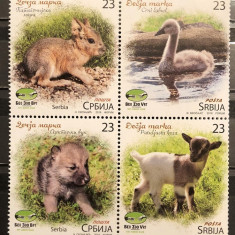 Serbia, fauna, pui de animale, 2018, MNH