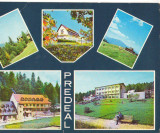 CPIB 16146 CARTE POSTALA - PREDEAL. MOZAIC
