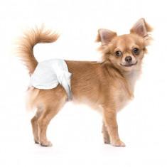 scutece pentru câini- 12 bucăți, mărimea XS-S