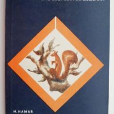 Din viata rozatoarelor – M. Hamar