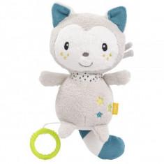 Jucarie muzicala - Pisicuta Aiko & Yuki PlayLearn Toys