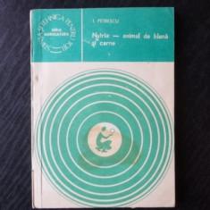 Nutria animal de blana si carne – I. Petrescu