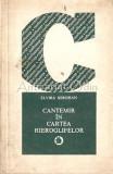 Cumpara ieftin Cantemir In Cartea Hieroglifelor - Elvira Sorohan