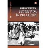 Odinioara in Bucuresti | Nicolae Vatamanu