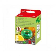 Capcana pentru muste cu momeala pe baza de fructe, culoare verde