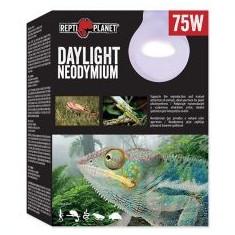 Bec REPTI PLANET Daylight Neodymium 75W