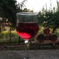 Vin Oporto