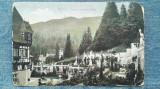 53 - Terasa Castelului Peles / carte postala, Circulata, Fotografie