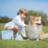 Setul micului veterinar, Bigjigs