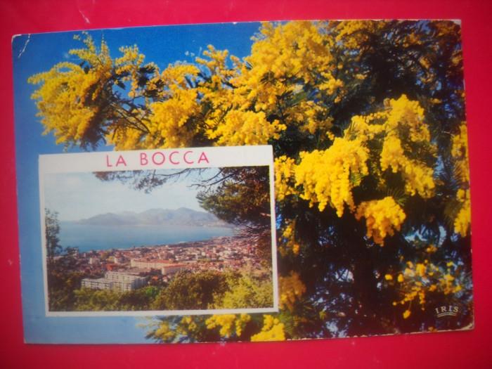 HOPCT 44135  CANNES / LA BOCCA -FRANTA-STAMPILOGRAFIE-CIRCULATA