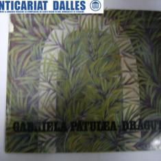 Gabriela Patulea-Dragut ( album de pictura)
