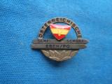 INSIGNA AUSTRIA-SCHI SCULE EBEN/PE