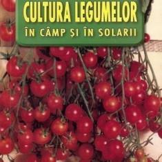 Cultura legumelor în câmp și în solarii