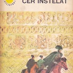 LOLA STERE-CHIRACU - CER INSTELAT