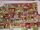 Colaj imagini fotbal - RAPID Bucuresti