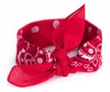 Bandana Art of Polo Red