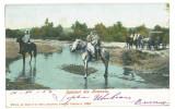 3965 - ETHNICS, Romania - old postcard - used - 1904