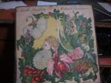 Nada florilor n 17, VINIL