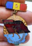I.871 INSIGNA ROMANIA BRIGADIER AL MUNCII PATRIOTICE h44mm