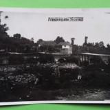 Gorj Novaci, Circulata, Printata