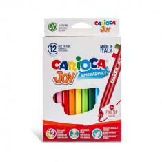 Carioca Joy super lavabila varf subtire Set 12 culori diferite