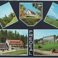 CPI B 11547 CARTE POSTALA - PREDEAL, MOZAIC, Circulata, Fotografie