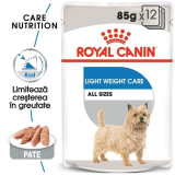 Royal Canin Light Loaf Care, 12 plicuri x 85 g