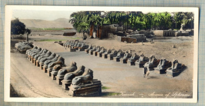 AD 589 C. P. VECHE - KARNAK -AVENUE OF SPHINXES -EGYPT foto
